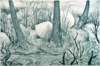 Gabrielle Barzaghi                     DRAWINGS Dogtown (Woodlands) Charcoal