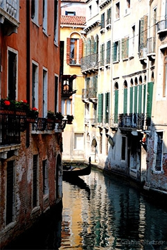 Digital Files of Artists Laura Stetser, Venice, 8x10, Photography, 2012