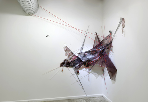 The Come On, 2013 Plastic tarp, mosquito netting, silicone tubing, rubber ball, acrylic, t-pins