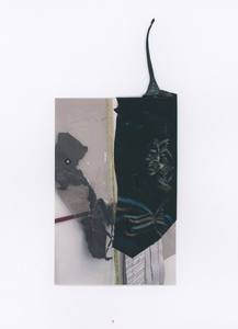 Notes on Clarissa (Volume I) Exhibition card, plastic garbage bag, staples, eyelet