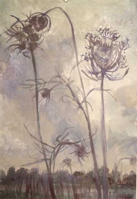 Paintings Queen Anne's Lace