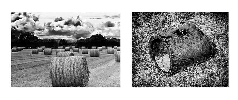 George Megrue Black & White photograph (diptych)