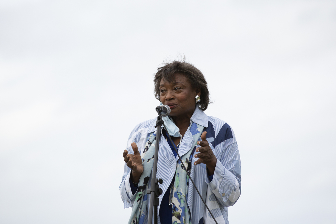 Black Lives Matter Rally Dobbs Ferry, NY 9/13/20 NYS Senator and Majority Leader Andrea Stewart-Cousins