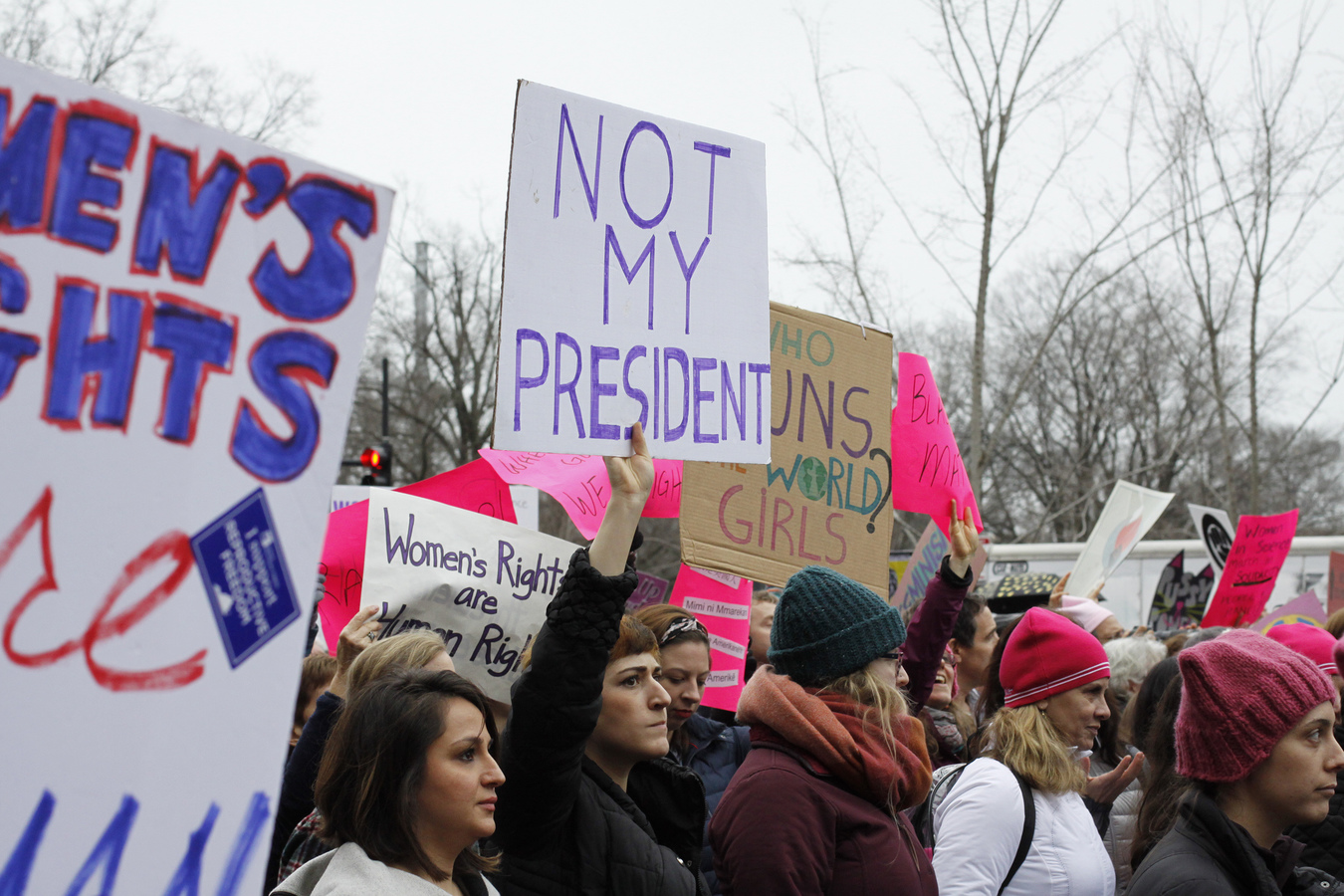 Women's March Washington DC 1/21/17