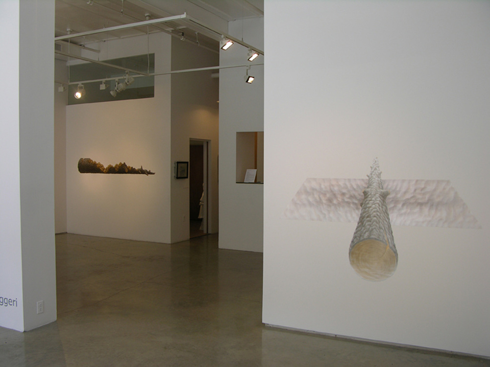 Gina Ruggeri Nancy Margolis Gallery 2011