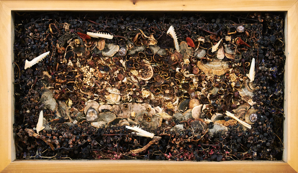 assemblages Compost # 8