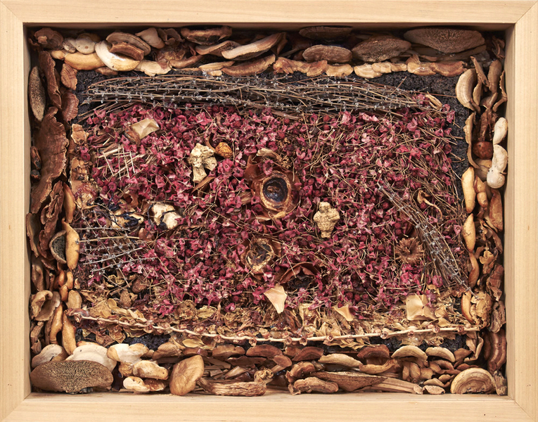 assemblages Compost #9