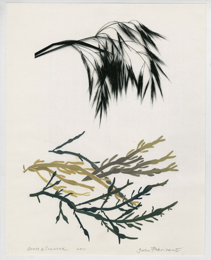 work on paper 2011-2013 Grass and Seaweed