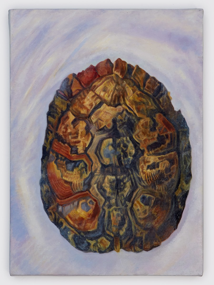 paintings 2006-2017 Tortoise/top