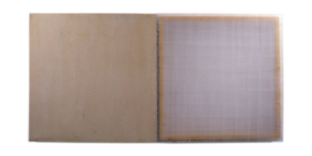 HEATHER  HUTCHISON WORKS 1990'S wax, canvas, rabbit skin glue, wood, plexi