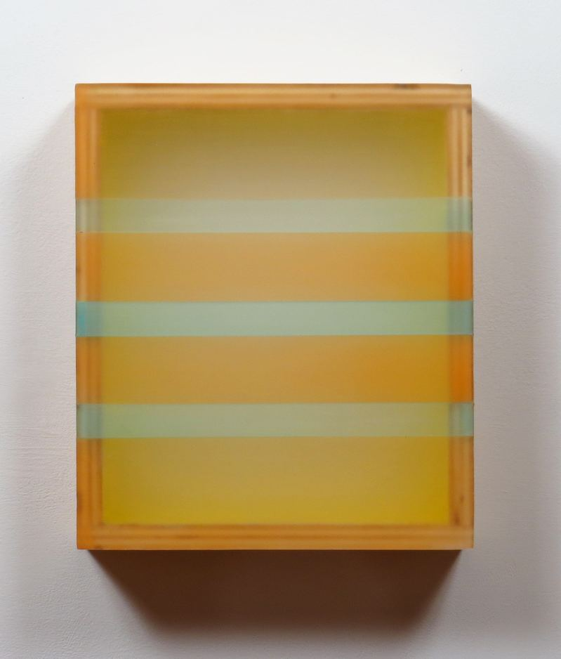 HEATHER  HUTCHISON WORKS 2015-2019 Plexiglas, birch, beeswax, pigment, tape