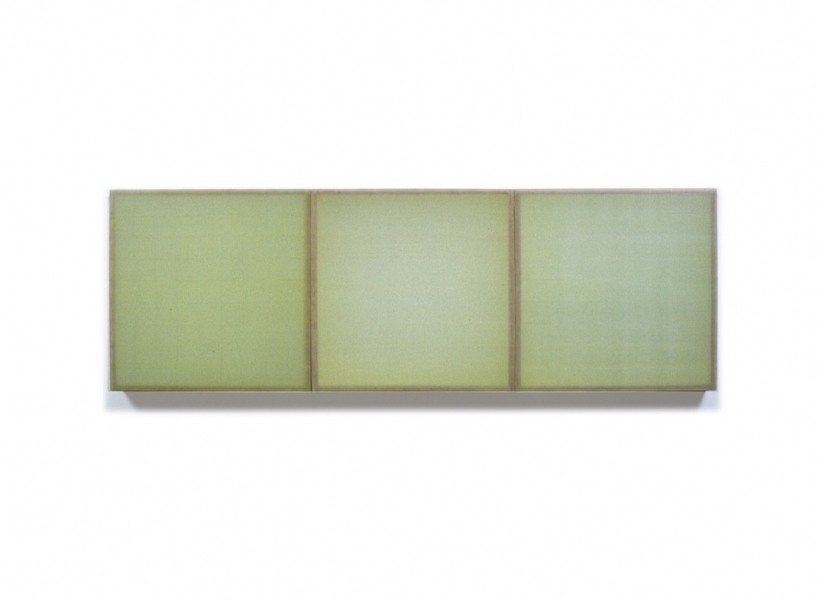HEATHER  HUTCHISON WORKS 2000-2009 Beeswax, Pigment, Plexiglas, Acrylic (3 units)
