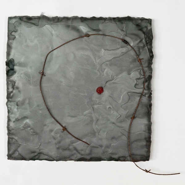 HEIDI BARKUN Varia Beeswax, dry pigments, oil paint, barbed wire on wood