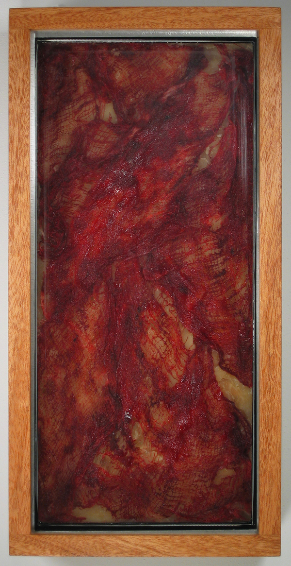 HEIDI BARKUN Paysages Found glass pane, beeswax, gauze, oil paint, plywood; mahogany box