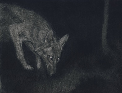 Jackie Skrzynski Trail Cam charcoal, conte and pastel