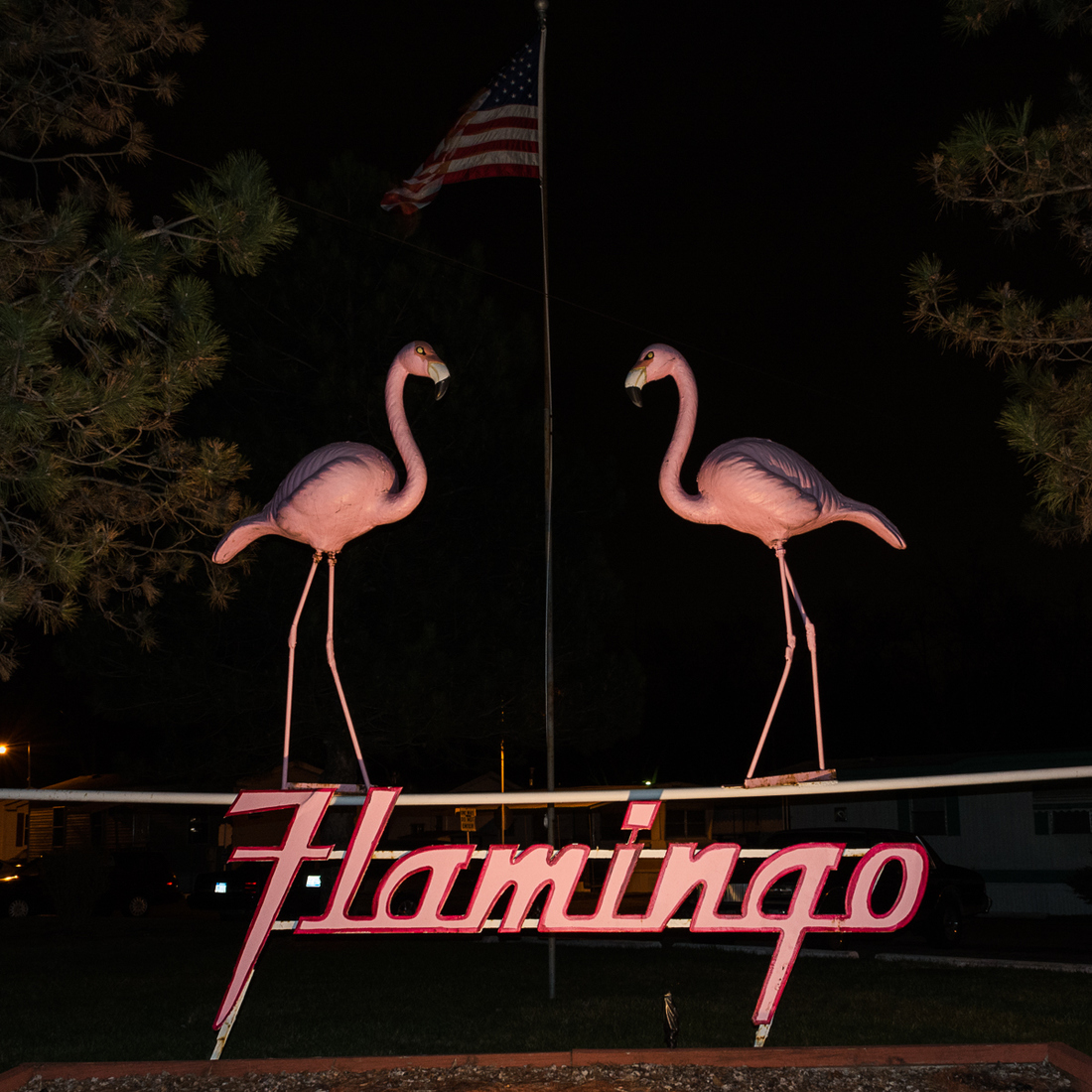 Signs Flamingo Trailer Park