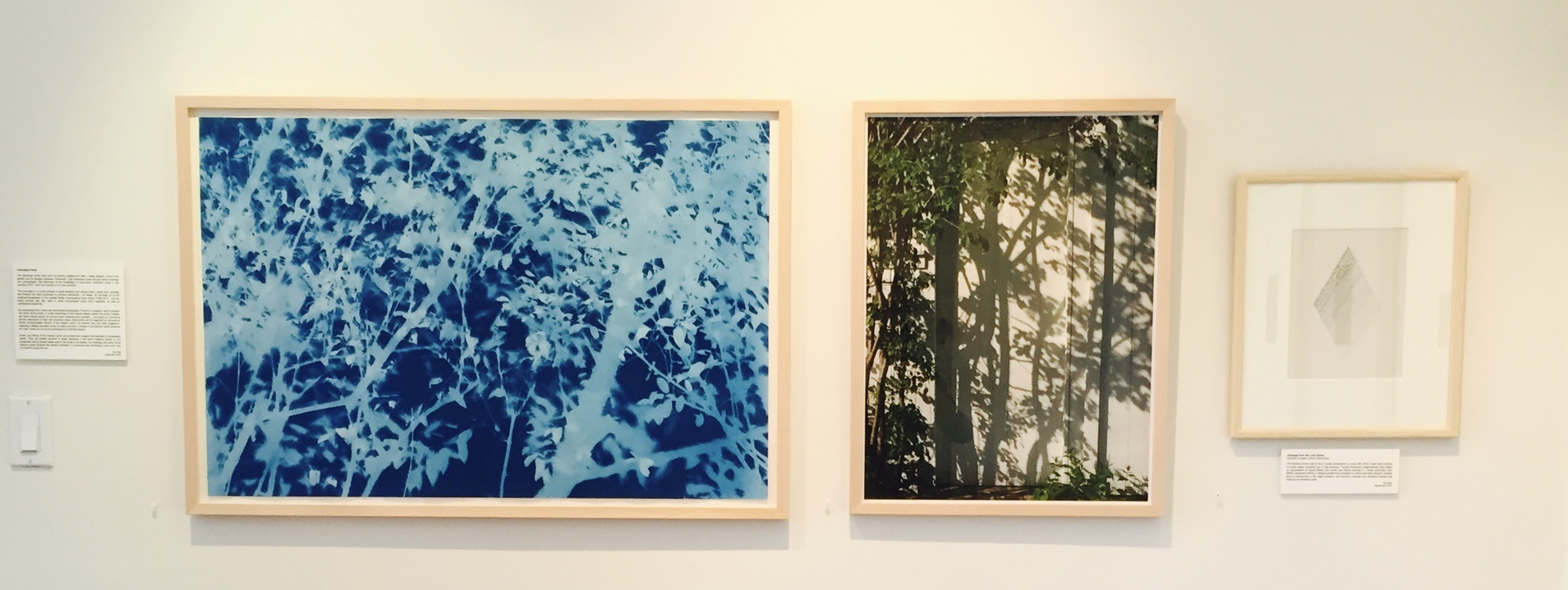 Jane Deering Gallery True Blue, and Black | Alternative Photography : Tom Fels & Gail Pine cyanotype . digital photograph . graphite drawing