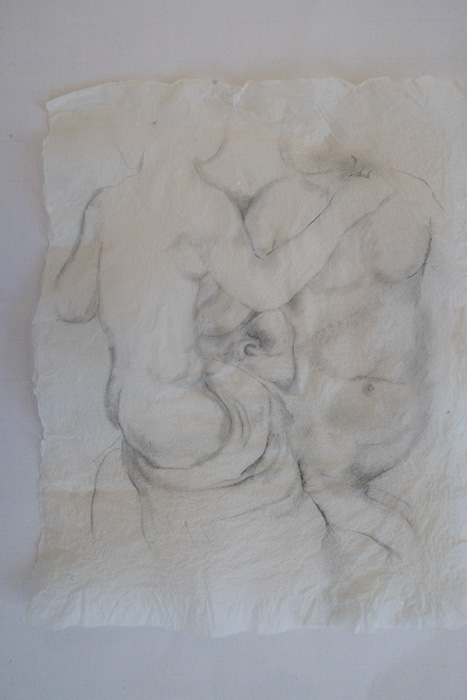 Jane Deering Gallery Drawn from Life Graphite on handmade abaca paper