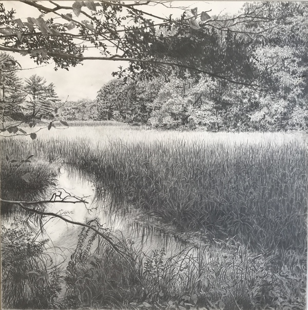 Jane Deering Gallery Deep in the Quiet Wood Graphite on panel