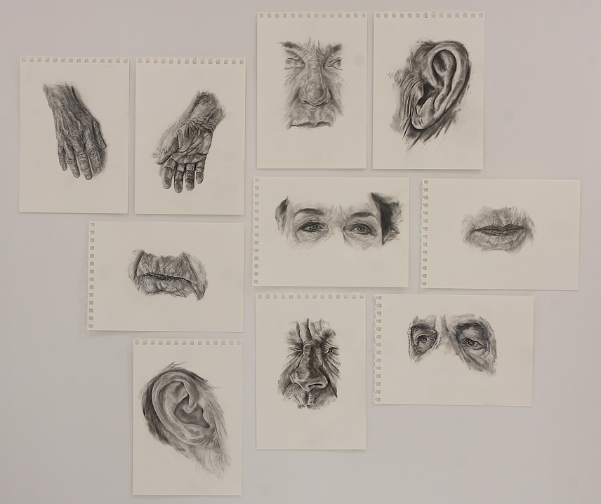 Jane Deering Gallery Selection of works Charcoal on paper