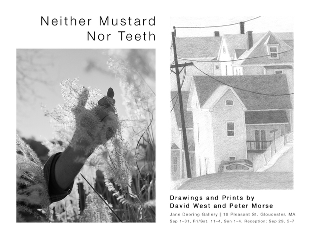 Jane Deering Gallery Neither Mustard Nor Teeth Exhibition Poster