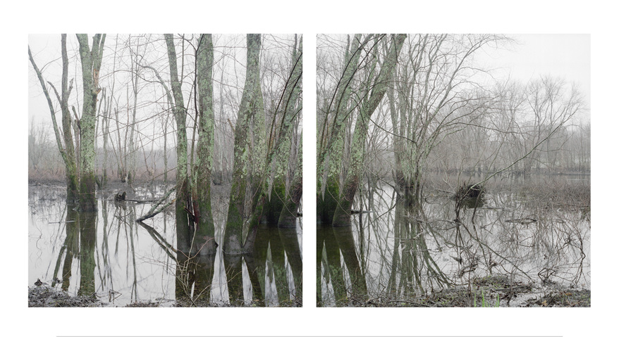Jane Deering Gallery Around the Concord River Archival Pigment Print on Epson Presentation Mat Paper