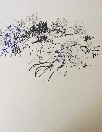 Jane Deering Gallery Gail Barker | Art as Process Ink on paper
