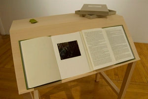 Jane Deering Gallery Stephanie Cardon book, Basswood desk, wall appendices