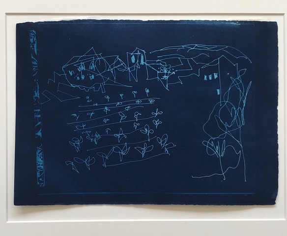 Jane Deering Gallery Juni Van Dyke | The Journey ... then and now Cyanotype