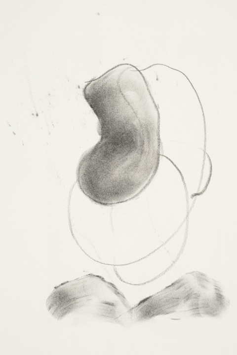 Jane Deering Gallery Marie Schoeff Trace drawing
