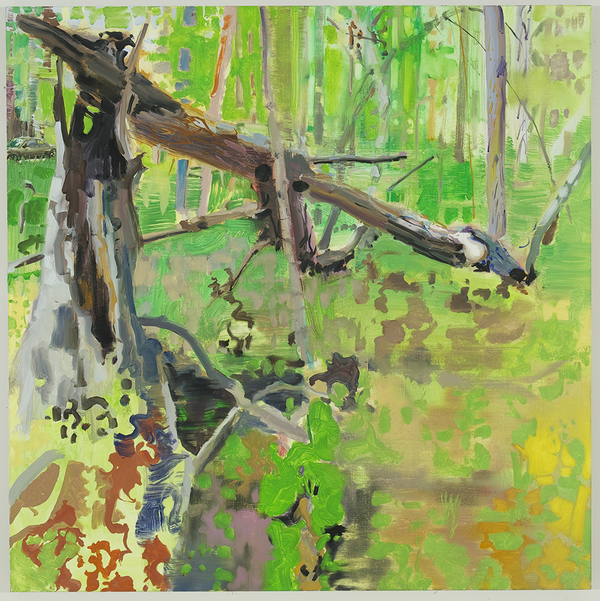 Jane Deering Gallery Exhibition: The Land Has Many Parts . selected images Oil on linen