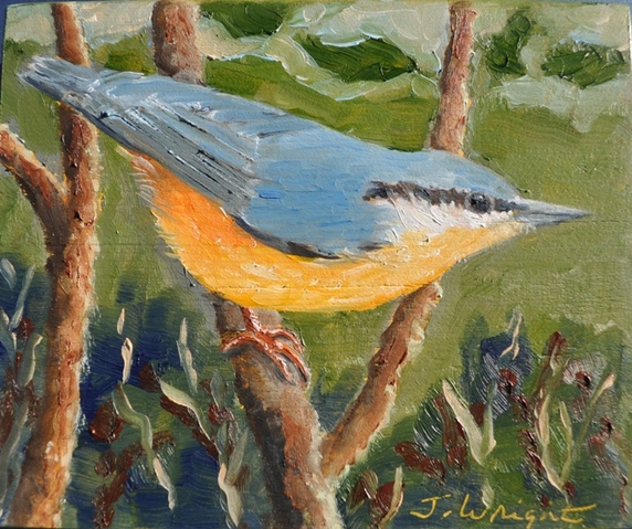 Jane Deering Gallery Archived Exhibitions Nuthatch