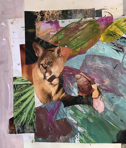 Mixed Media on Mylar /wood Cat Encounter