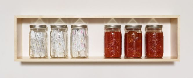 jane hugentober 2016 in the beginning, in the garment-fold ovulation and pregnancy tests, tomatoes, ball canning jars and maple