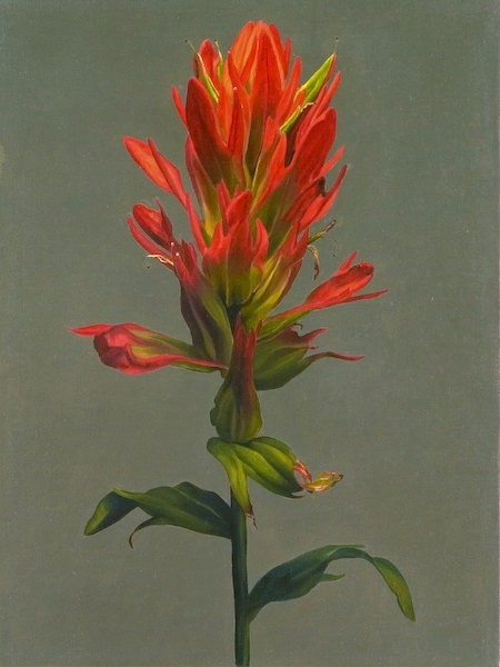 Archive Red Paintbrush
