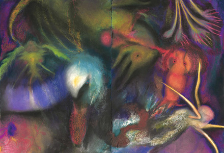 JAN HARRISON Pastel/Paper Paintings 1993-2019   Animals in the Anthropocene    pastel, charcoal and oilstick on rag paper