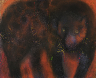 JAN HARRISON Pastel/Paper Paintings 1993-2020   Animals in the Anthropocene    pastel, ink, and charcoal on rag paper