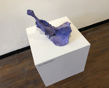 JAN HARRISON Recent Sculpture and Installation fired porcelain and ink sculpture
