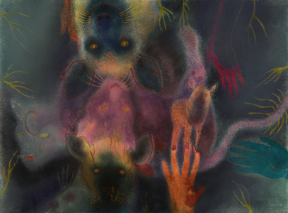 JAN HARRISON Pastel/Paper Paintings 1993-2019   Animals in the Anthropocene    pastel, ink, colorpencil, and charcoal on rag paper