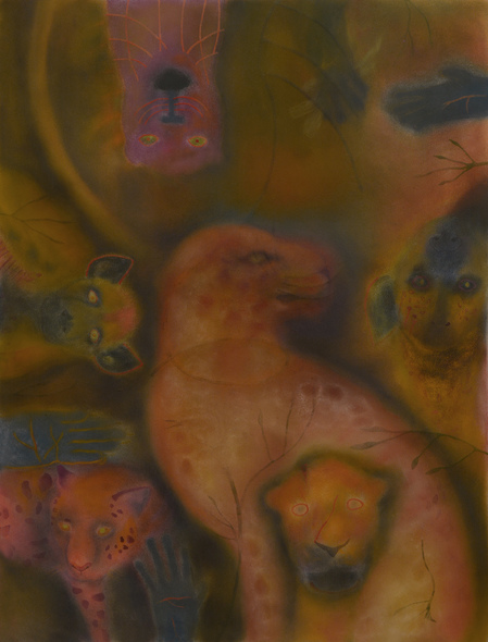JAN HARRISON Pastel/Paper Paintings 1993-2021   Animals in the Anthropocene    pastel and ink on lavis fidelis rag paper