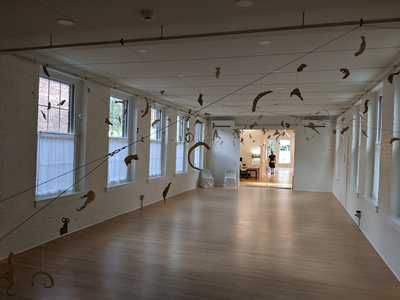 JAN HARRISON Recent Sculpture and Installation fired porcelain sculptures suspended from cords and cables.