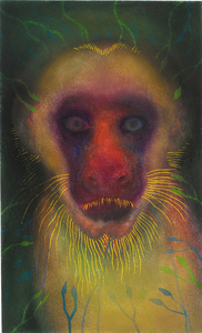 JAN HARRISON The Corridor Series - Primates/Birds 2009-2011 Pastel, charcoal, ink and colorpencil on rag paper