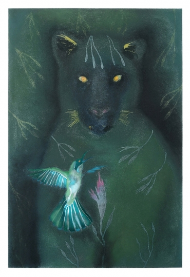 JAN HARRISON The Corridor Series - Big Cats, and Other Animals 2009-2012 Pastel, charcoal and ink on lavis fidelis paper