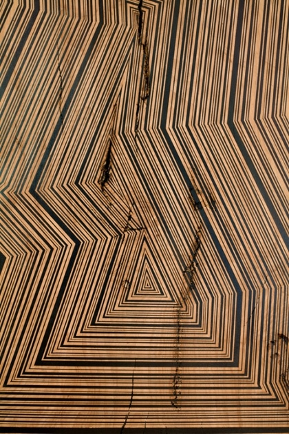 JASON MIDDLEBROOK planks acrylic on beech wood plank