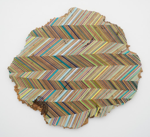 JASON MIDDLEBROOK wall works Acrylic on Maple