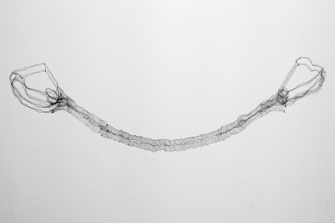 The Umbilical Cord, 2012