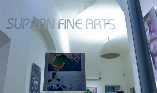 Jeanne Szilit Suppan Fine Arts - ENIGMA  2012