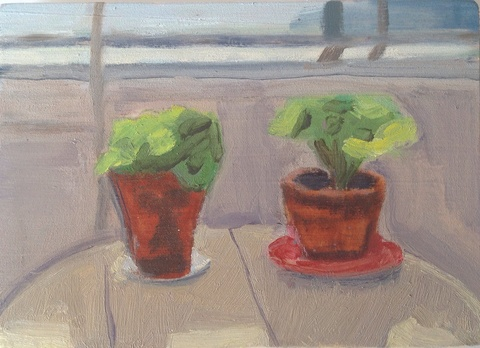 painting Geraniums on back porch