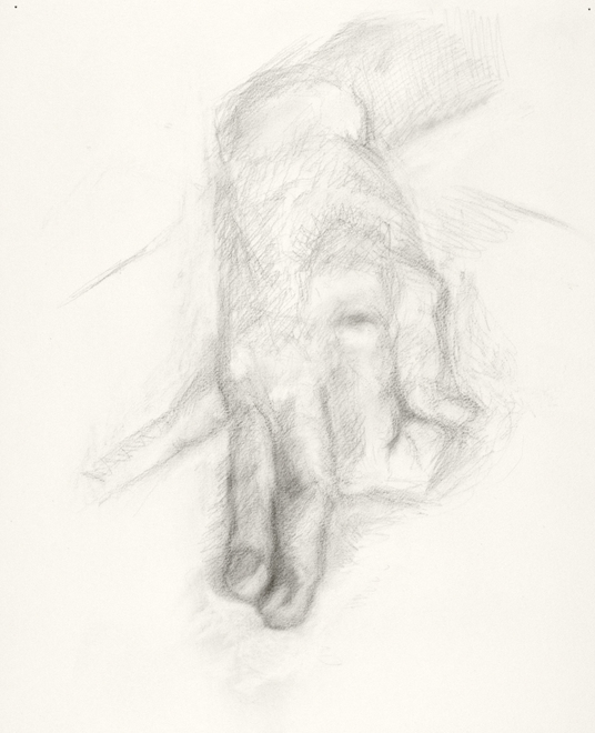 Paintings and drawings of my left hand  Paintings and drawings of my left hand