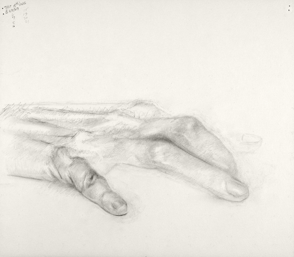 Paintings and drawings of my left hand Study of hand (THOT series, no. 18)